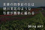 【北海道】四季彩の丘の見頃は?絶景お花畑を体験リポート