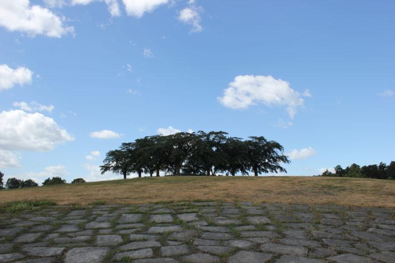 スウェーデンのスコーグスシュルコゴーデンの瞑想の丘