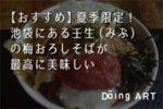 【東京観光】池袋にある壬生(みぶ)の夏季限定梅おろしそばが最高に美味しい