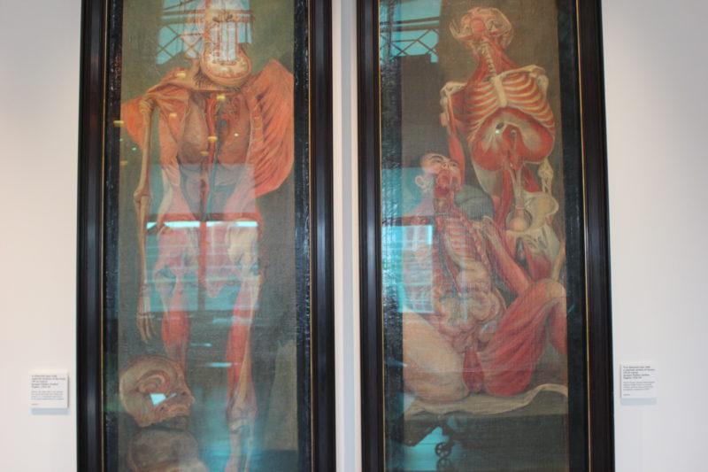 ウエルカムコレクションの図書館の絵画