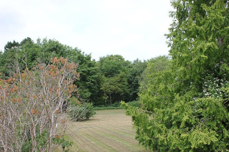 フムレベックの田舎の景色