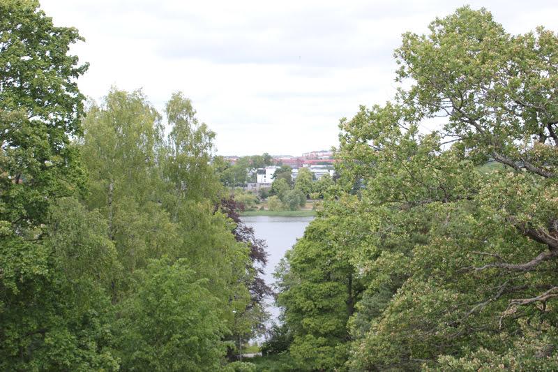 スウェーデンローゼンダールガーデン行きの豊かな緑