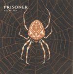 """""""PRISONER"""" Free Download"""