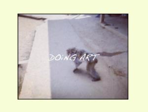 """""""Monkey"""" Free Download"""